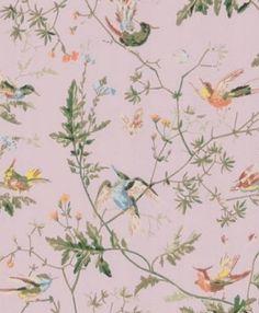 62/1003 Humming Birds - Seinäruusu - Verkkokauppa