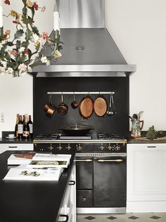 odeon lacanche - when a stove makes you want to cry because it's so beautiful -