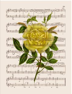 Yellow rose wall art print on music or dictionary por bmarinacci