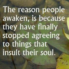 The reason people awaken is because they have finally stopped agreeing to do things that insult their soul.