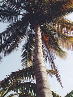Avec ce temps tristounet je n'ai toujours pas l'impression d'être en été et je regrette de plus en plus le Sénégal... Venez lire mon article pour avoir un peu de soleil aha!
