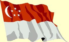 Cingapura Flag, Country, Art, Singapore, Art Background, Rural Area, Kunst, Science, Country Music