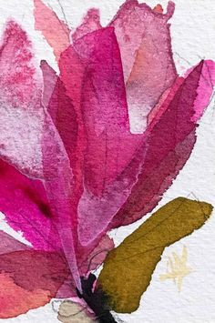 Magnolia no. 17 original watercolor painting Angela Moulton ACEO Art #Impressionism