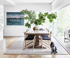 A lovingly renovated bush-meets-beach property in Sydney captured the hearts of its owners, a well-travelled family of four. Modern Rustic Homes, Beach Properties, Contemporary Apartment, Kitchen Nook, Australian Homes, Timber Flooring, Minimalist Home, Living Room Interior, Dining Area