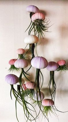 Jellyfish airplants