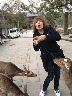 """""""奈良なーーーう\(^^)/ PS.ギャル親父が内股で鹿に襲われる。。。 ヒーセ"""