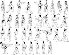 5taegukochang Taekwondo Forms, Fitness Exercises, Karate, Martial Arts, Manual, Arms, Teaching, Activities, Fictional Characters