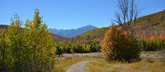 Cascade Springs - Uinta National Forest