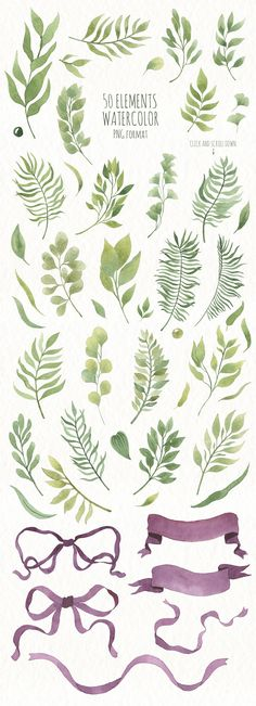 Watercolor Leaves and branches  by Arina Ulyasheva on @creativemarket