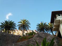 """Cena, """"Il Gallo d'Oro""""(Ristorante) di """"Cliff Bay Resort Hotel"""", Funchal Madeira Portugal (Luglio)"""