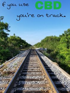 Pin by Joy Hafen on Shows and Movies and other Visual Fun in 2019 Blur Image Background, Studio Background Images, Photo Background Images, Picsart Background, Photo Backgrounds, Skier, Train Pictures, Train Tracks, Nature Pictures