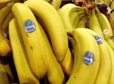Bye, bye, bananas In the mid the most popular banana in the world—a sweet, creamy variety called Gros Michel grown in Latin America—all but disappeared from the planet. Virus Del Zika, Bananas, Fruits And Vegetables, Veggies, Banana Plants, Food System, Foods To Eat, Protein, Stickers