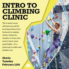 Introduction to Climbing - Feb 2020 Good Habits, Social Events, Have Some Fun, Rock Climbing, Bouldering, Clinic, Sydney, Teaching, Fitness