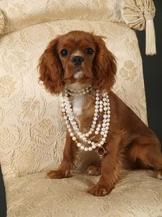 A lady & her pearls