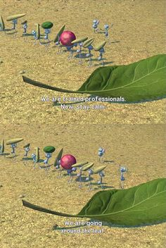 """""""We are going around the leaf"""""""