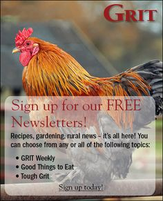 Homesteaders life on the farm! Great, back to the basics information, pictures, DIY projects, etc...