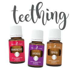 Whip up this awesome roller recipe for quick relief and get your happy baby again! Teething Baby Essential Oils, Essential Oils For Babies, Therapeutic Essential Oils, Yl Essential Oils, Young Living Essential Oils, Essential Oil Blends, Doterra Oils, Young Living Baby, Young Living Oils