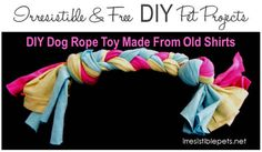 Make your own pet toys from old t-shirts and socks.