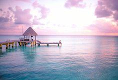 高級リゾート「星のや」や温泉旅館「界」など、数多くの宿泊施設を手がける星野リゾートが、2015年4月1日から、タヒチ・ランギロア島に「星野リゾート Kia Ora ランギロア」をオープンする。 ランギロア島は、タヒチの首都パペーテから飛行機で北東に約1時間、世界で2番目に大きなラグーンを持つタヒチ最大の環礁の島だ。「Kia Oraランギロア」は、美しいラグーンに面した60の客室に加え、ランギロア環礁の南、船で1時間のプライベート・アイランドにあるル・ソバージュ5室を含む全65室。海原と珊瑚礁に囲まれダイナミックな大自然の営みとの一体感が心地よく、素朴な笑顔に出会う上質な旅を提供する。 ランギロアブルーと称される透明度抜群の海、その広大なラグーンに生息するイルカ、マンタ、色とりどりの美しい魚たち──。星野リゾートが提供する「日本のおもてなし」と、ランギロアならではの格別な体験と発見が待っている! 星野リゾート Kia Ora ランギロア(現 Hotel Kia Ora Resort & Spa) オープン日/2015年4月1日 住所/B.P.198-98775 AVATOU…