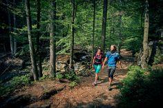 Reiseplaza: Wandern mit Kindern – Tipps, mit denen es Groß und Klein Spaß macht (Foto: epr/ARBERLAND/©woidlife, Marco Felgenhauer) Pictures, Hiking With Kids, Family Vacations, Tours