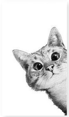 Cat Drawing, Disney Cars, Belle Photo, Animal Drawings, Cat Art, Cute Wallpapers, Cute Animals, Sketches, Home Office