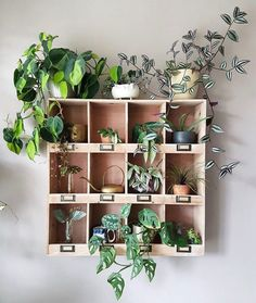 unexpected ways to decorate with houseplants, . 17 unexpected ways to decorate with houseplants, 17 unexpected ways to decorate with houseplants, Decoration Hall, Decoration Plante, Diy Flower Boxes, Diy Flowers, Plant Wall, Plant Decor, Jungle House, Plant Shelves, Houseplants
