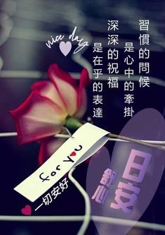 Good Day Wishes, Good Morning Greetings, Greed, Chinese, Chinese Language