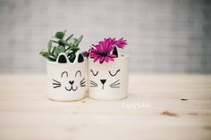 Lady Selva: Gatomacetas, edición limitada.  Lady Selva ceramics is inspired by cats, to simple shapes that are minimally decorated yet convey sweet personalities.  Lady Selva creates adorable Ceramic Companions for Plants.  Cat Planter. Small ceramic cat plant pot. Animal ceramics. cat ceramics, Animal pot. Cat pot. Handmade.  Lady Selva shop. Cute Cat pot.