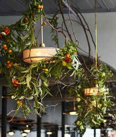 Emily Thompson @ Roman and Williams' the Guild in NY Roman And Williams, Nyc Christmas, Overhead Lighting, Dried Flowers, Garden Inspiration, Plant Hanger, Event Design, Summer Wedding, Instagram