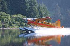 Straightforward supplemented awesome alaska fishing dig this Float Plane, Sea Plane, Alaska Salmon Fishing, Glacier Bay Alaska, Kodiak Island, Alaska Railroad, Ketchikan Alaska, Visit Alaska, King Salmon