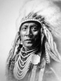 Crow - Native American. Indian, headpiece, culture, beautiful, male, warrior, proud, wild, vintage, photo b/w.