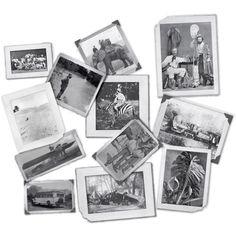 7 Gypsies Serengeti Photos - Vintage Safari Photos - Vintage Travel Photos - Travel Collage Photos - Multi Media Supplies by OneDayLongAgo on Etsy