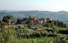 http://www.to-tuscany.com/cmsdata/db/images/localtuscany/categories/Volpaia-chianti-siena-1.jpg