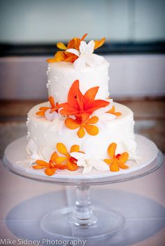 2-tier Maui Wedding Cake with tropical orange accents / www.mikesidney.com