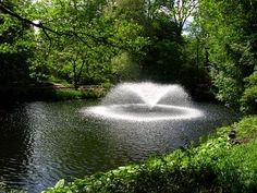 Images of homemade fountains for big ponds Garden Stream, Water Garden, Big Backyard, Backyard Ideas, Pond Fountains, Pond Ideas, Family Night, Outdoor Fun, Water Features