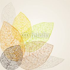 feuilles fines