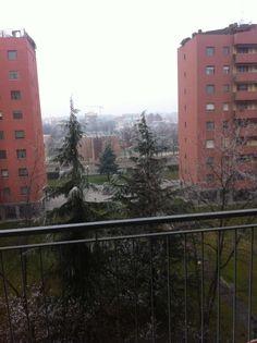 Frozen Tree in Rozzano!