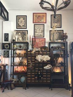 Cabinet of Curiosities. Cabinet of Curiosities. Casa Halloween, Creepy Halloween, Goth Home, Cabinet Of Curiosities, Deco Boheme, Gothic Home Decor, Victorian Gothic Decor, Gothic Room, Interior Decorating