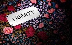Liberty — Story Barnes Foundation, Branding Design, Logo Design, Brand Assets, Swing Tags, Brand It, Archaeology, Liberty, Crafts