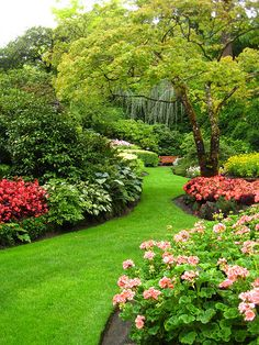 - Small garden design ideas are not simple to find. The small garden design is unique from other garden designs. Space plays an essential role in small . Butchart Gardens, Front Yard Landscaping Design, Outdoor Gardens, Beautiful Gardens, Garden Decor, Small Garden Design, Backyard Landscaping Designs, Beautiful Flowers Garden, Cottage Garden