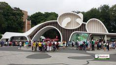 Chengdu Research Base of Giant Panda Breeding Tour www.westchinago.com info@westchinago.com