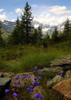 Cheneil, Valle d'Aosta, Italy