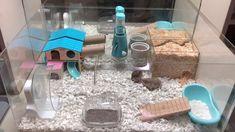 Sharing my custom acrylic hamster cage! I love the transparent look. Hamster Bin Cage, Cool Hamster Cages, Gerbil Cages, Hamster Life, Hamster Habitat, Hamster Toys, Hamster Stuff, Hamster Pet Shop, Hamster Ideas