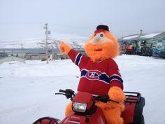 15 Best Youppi! au Nunavik / Youppi! in Nunavik images in