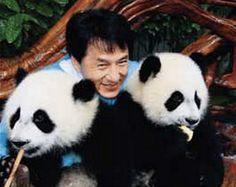 Jackie with his pandas