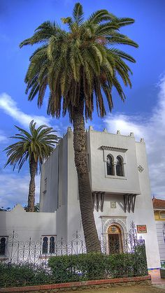 Jardin d'essai - Alger