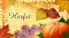 herfst-collage-def.jpg 1.600×900 pixels