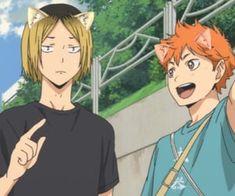 Anime Cat Ears, Anime Cat Boy, Gato Anime, Boy Cat, Anime Boys, Kenma Kozume, Hinata Shouyou, Neko, Cat Icon