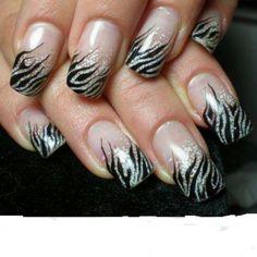 Zebra cool