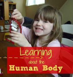 Learn all about the human body with these lesson plans. 12 weeks of fun activities for K-3rd graders!